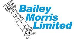 Bailey Morris Limited - Benchmark International Success