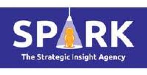 Spark Market Research acquired by Newmore Capital